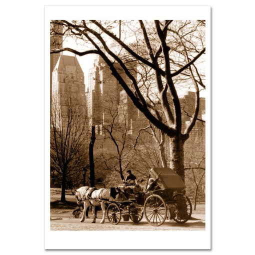 Carriage Ride Central Park Art Print Poster MP-1005