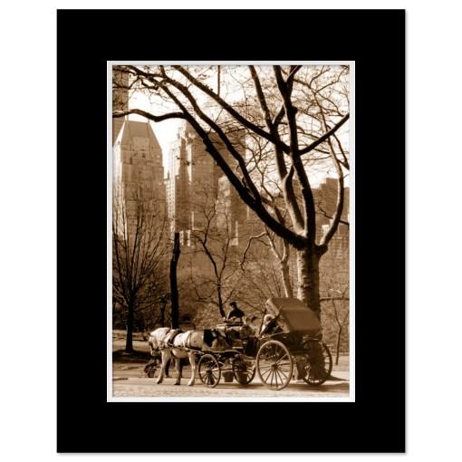 Carriage Ride Central Park Art Print MP-1005 Mat Black