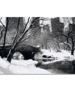 Love Bridge Central Park New York Black White Art Print NY MP-1006
