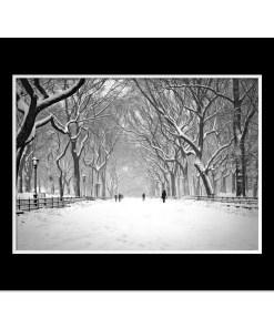 Snow on Poet Walk Central Park Art Print Poster NY MP-1146 Mat Black