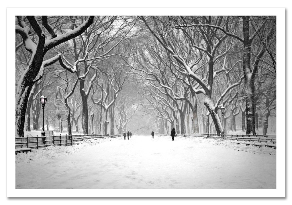 Snow on Poet Walk Central Park Art Print Poster NY MP-1146 post