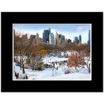Wollman Rink in Central Park NY Art Print Poster MP-1142 Mat Black
