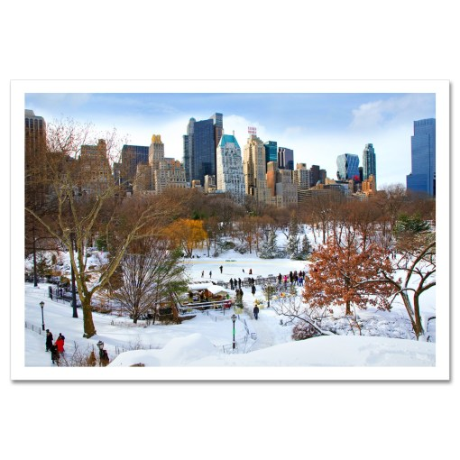 Wollman Rink in Central Park NY Art Print Poster MP-1142