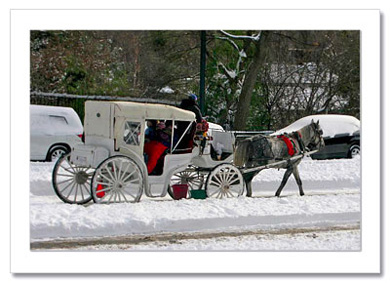 Carriage Ride Central Park West NY Christmas Card HPC2809