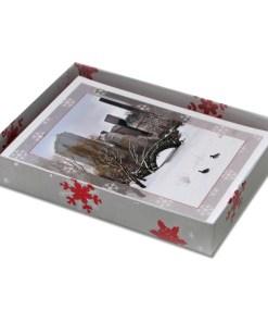 Love Bridge Snow Central Park NY Christmas Cards CGC8802 box