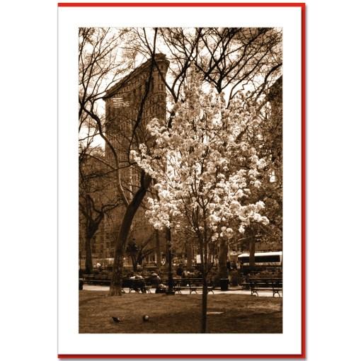 Spring at Flatiron Building Handmade Photo Card HPC2314