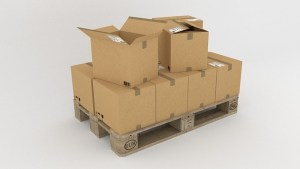 Local movers in Florida - Cardboard boxes