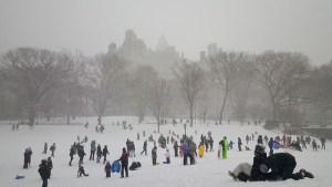Park in NY in winter, full of people.