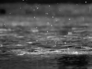 a gray image of rain drops