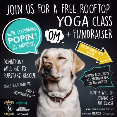 Popin One Year Anniversary Dog Yoga Tuesday August 28th