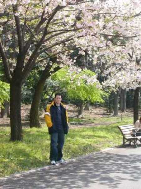 nyctalking japan