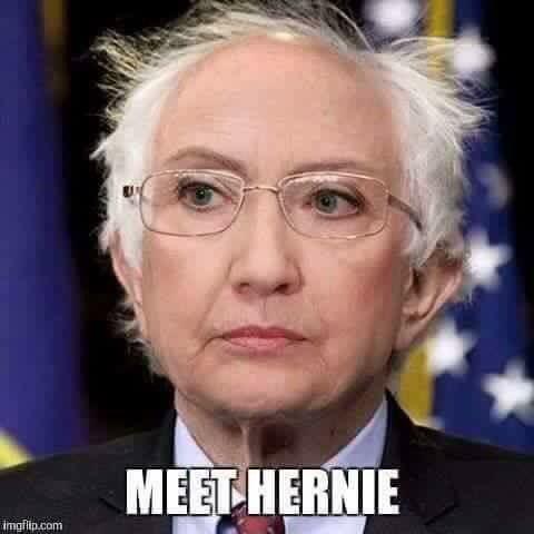 meet hernie