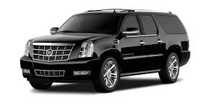 Rent a Car, Limo, or a Van and Driver for a Day