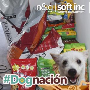 #dognacion febrero