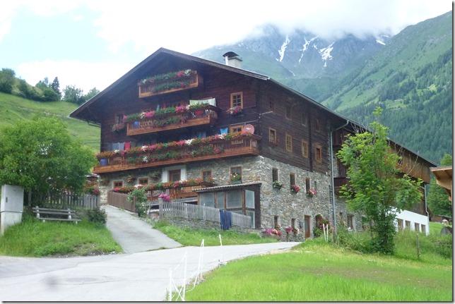 Virgental (13)