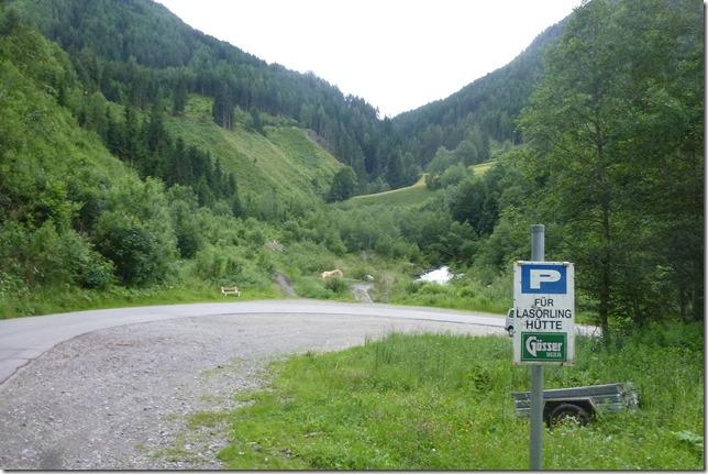 Virgental (5)