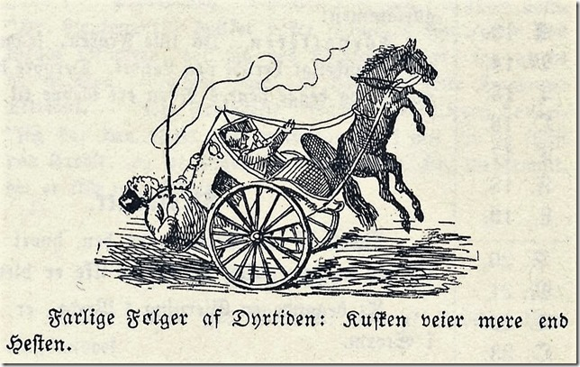 Dyrtid 1854