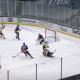 New York Islanders Lose