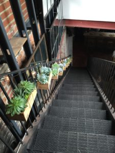 Stairs to Rosemary's Orto