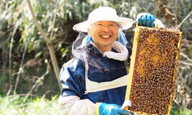 養蜂家の船橋ハニーさんがNYでミツバチの保護活動講演と映画上映