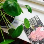 Din helt egen positive notesbog –  drys med krymmel og bliv klogere på dig selv