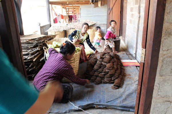 Traditional soy cakes, Inle, Burma