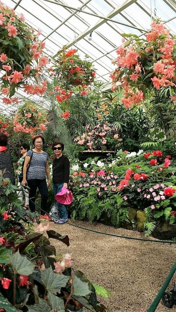 garden, Melbourne,