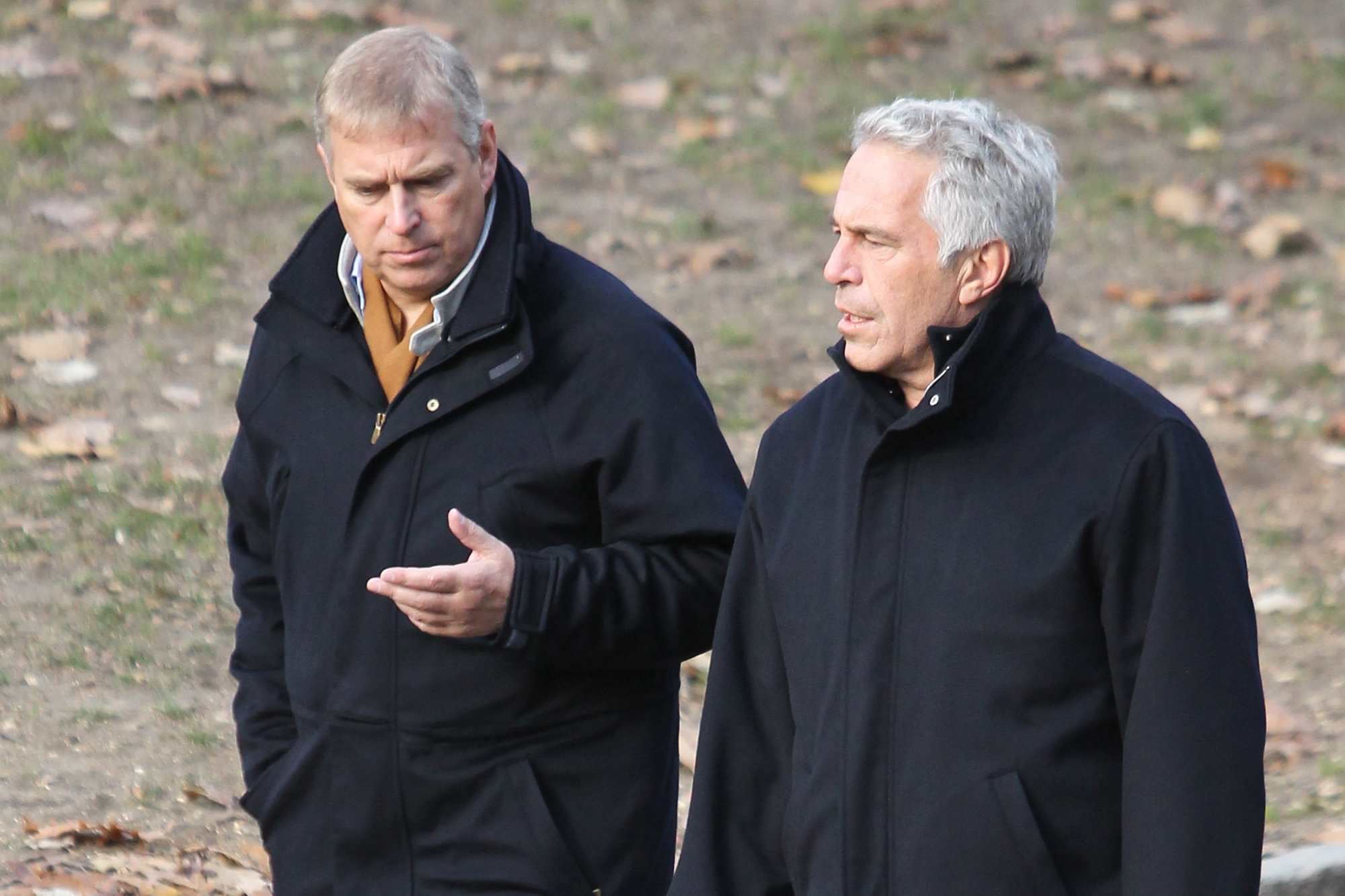 Prince Andrew Was Jeffrey Epstein S Trophy To Impress People