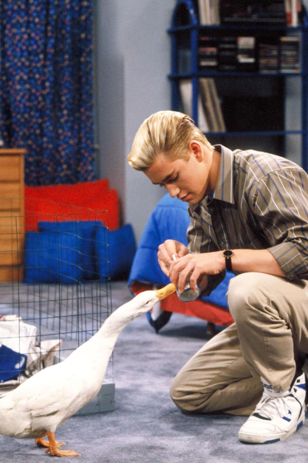 SAVED BY THE BELL, Mark Paul Gosselaar, Season 3, 1989-1993 (c)NBC / Courtesy: Everett Collection.