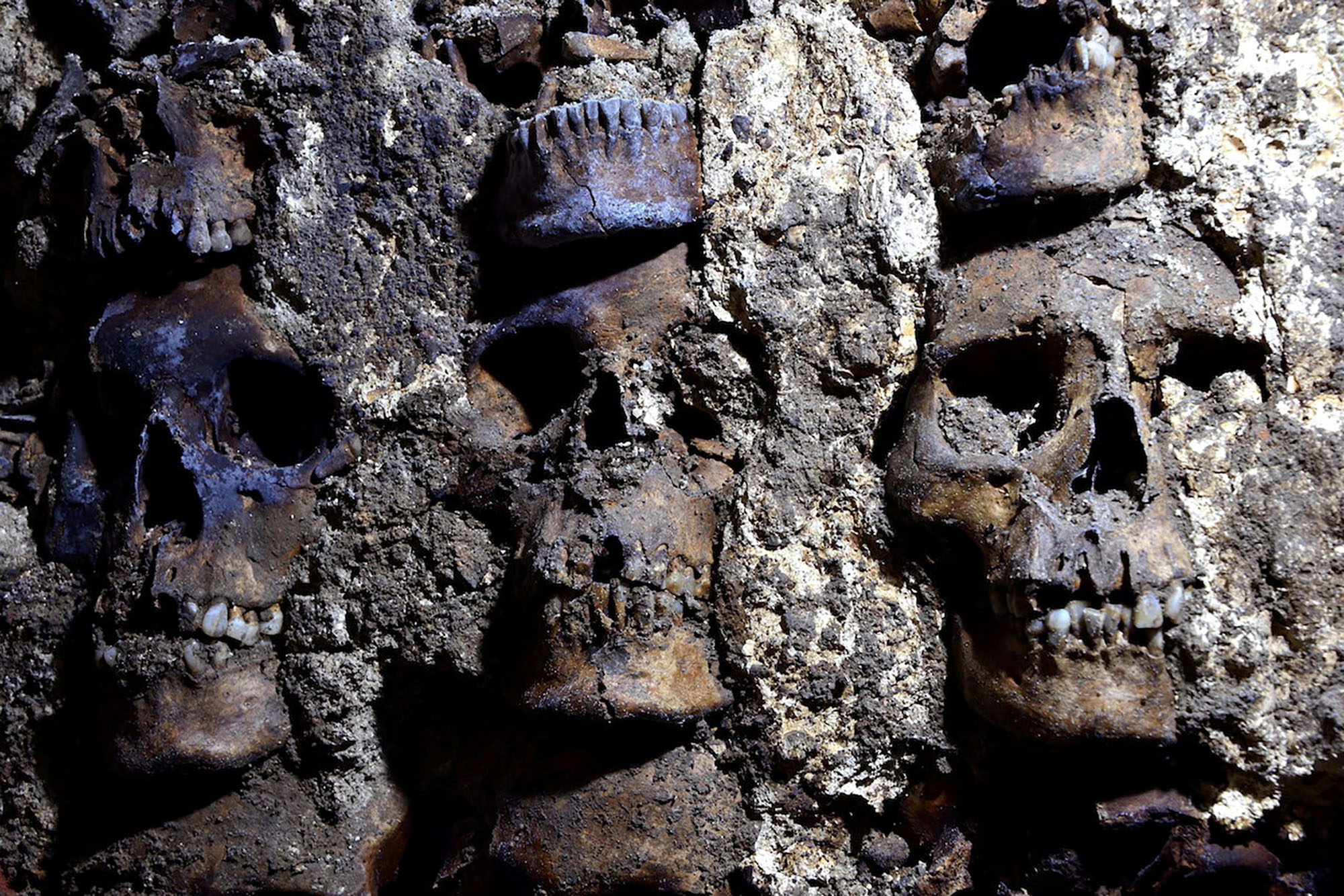 'Tower of human skulls' built by Aztecs found in Mexico City