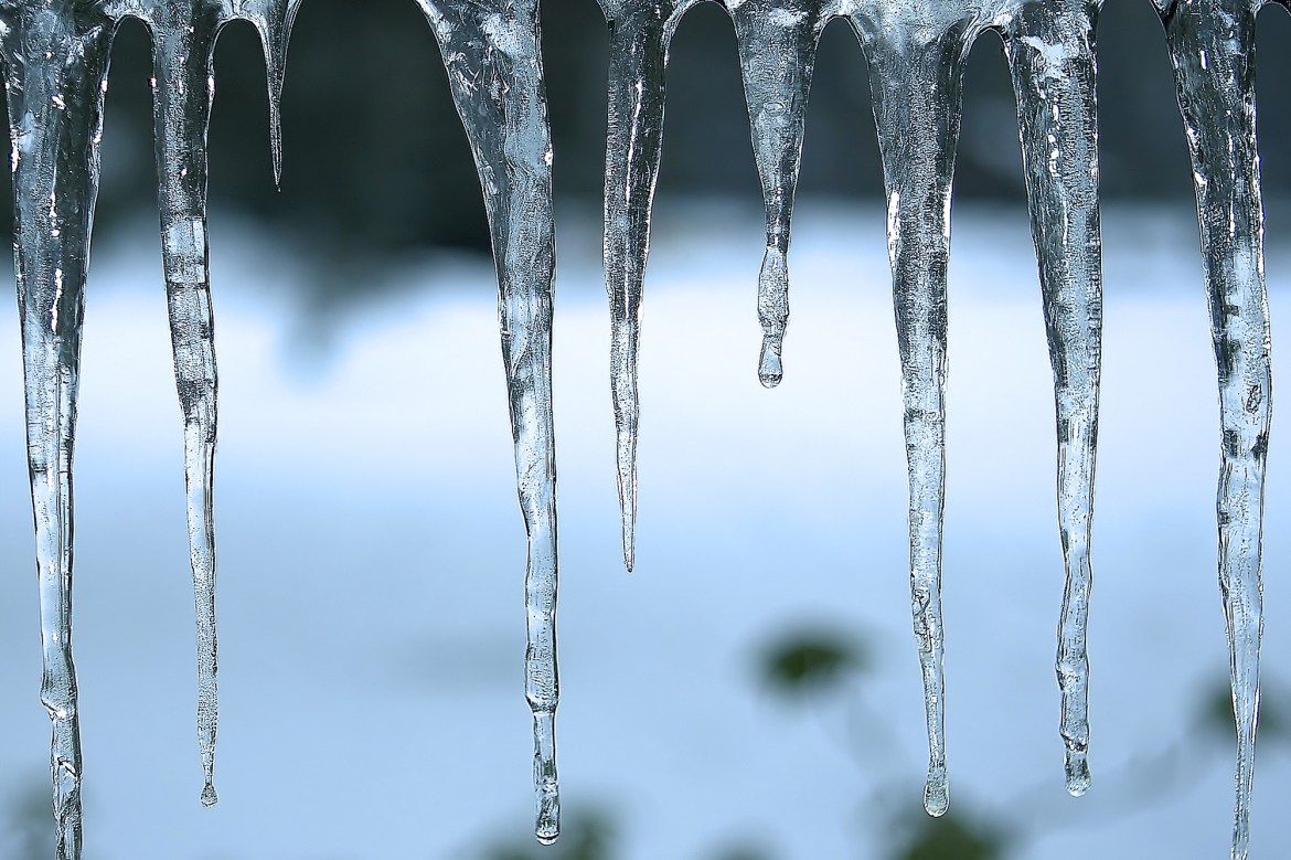 Poopsicles: Meteorologist warns icicle eaters are likely licking bird feces 1