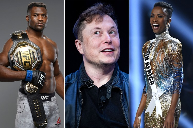Elon Musk to join board of company that owns UFC, Miss Universe - The New  York City Daily Post
