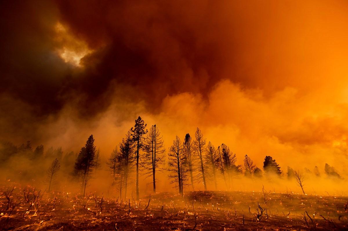 APTOPIX forest fires in California