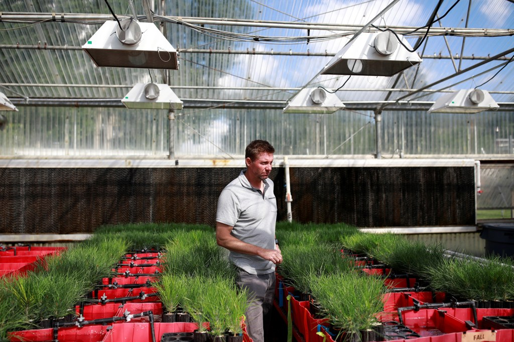 Dr. Owen Burney gives a tour of the facilities at John T. Harrington Forestry Research Center in Mora, New Mexico, U.S., July 26, 2021.