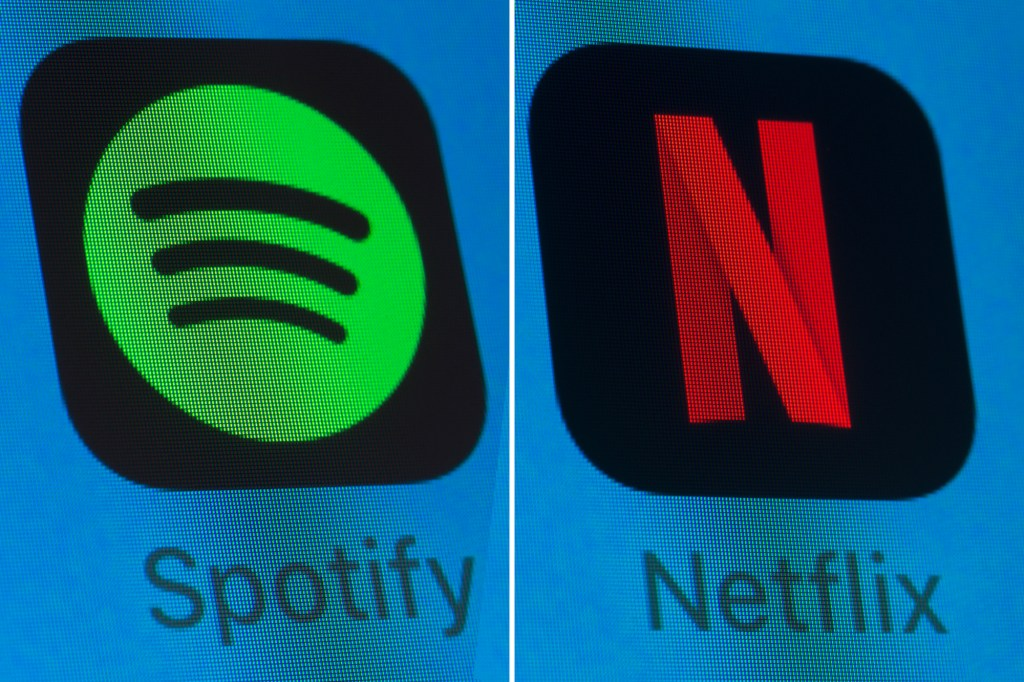 Spotify and Netflix apps