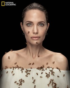 Angelina Jolie appeared on the cover of National Geographic in May covered in a bee swarm.