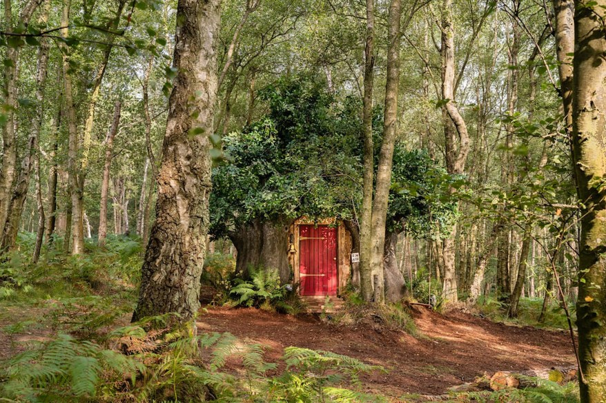 The cottage is located in the Ashdown Forest in Nutley, England, which was the inspiration for the Hundred Acre Woods.