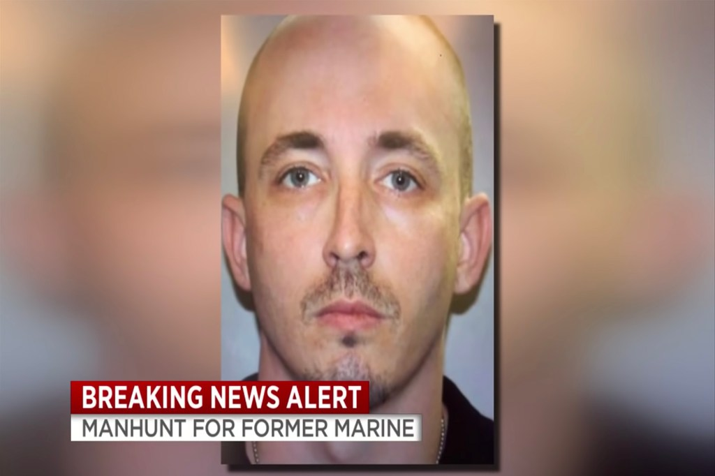 Patrick McDowell was driving a stolen vehicle and is still on the run, as cops believe he shot a police dog that was on his trail.