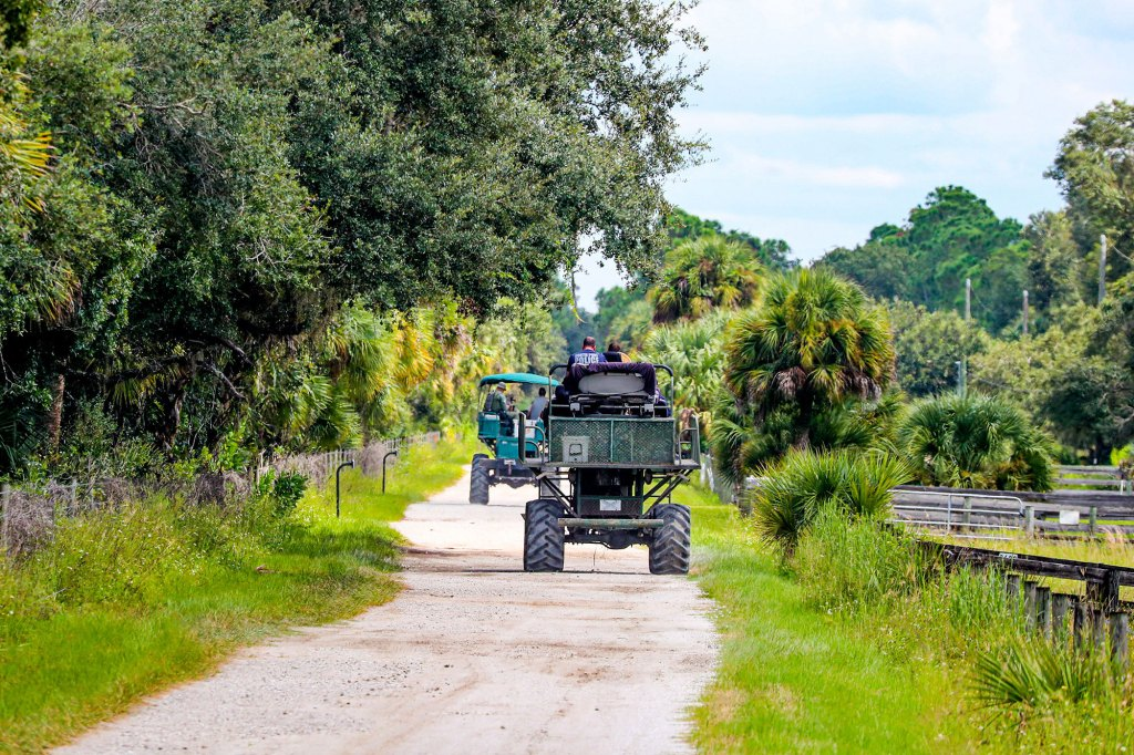 Law enforcement searching for Laundrie in the Carlton Reserve in Venice, Florida on September 21, 2021.