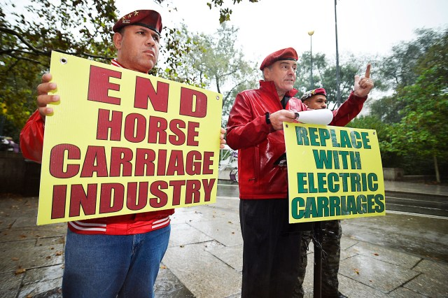 NYC mayoral candidate Curtis Sliwa, joined by his Guardian Angels, vowed to eliminate the horse drawn carriages at Central Park.
