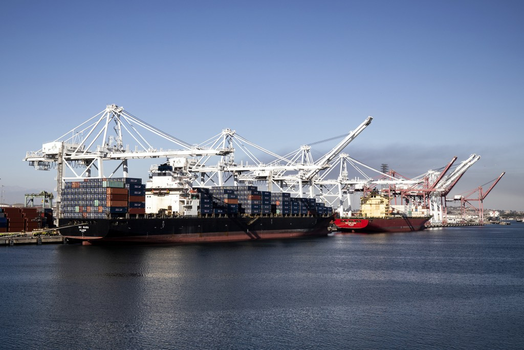 Container ships are docked at the Los Angeles and Long Beach Ports in Long Beach