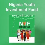 Nyif loan application portal