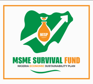 Survival Fund Payroll Scheme For North East States