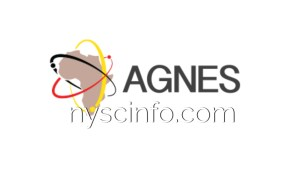AGNES Grants For Intra-African Mobility Young Researchers