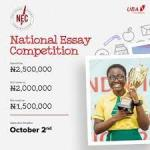 UBA Foundation National Essay