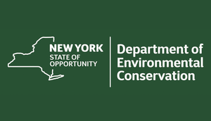 DEC Announces $3 Million in Grants Available for Invasive Species Projects