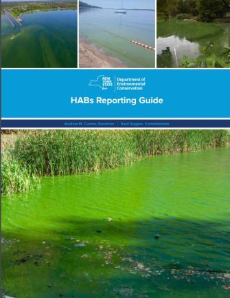DEC Publishes HABs Reporting Guide