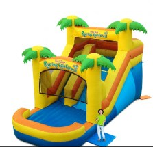 Tropical Water Slide Inflatable Rental
