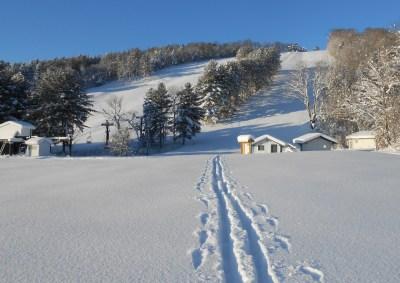 Untouched-Powder-at-Snow-Ridge