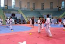 Sejumlah atlet Taekwondo menjalani Pelatnas di bawah bimbingan pelatih asal Korea Selatan jelang Asian Games 2018. (Adt/NYSN)